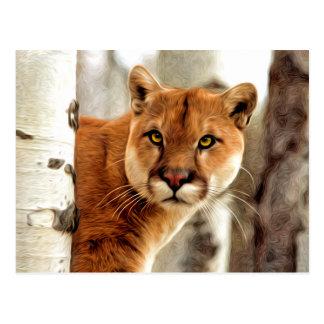 Pumafotomålning Vykort