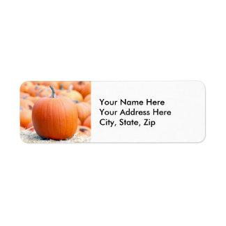 Pumpa på sugrörbalen returadress etikett