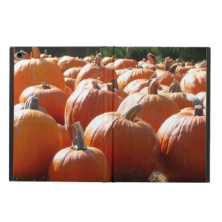 Pumpafoto för nedgång, Halloween eller Powis iPad Air 2 Skal