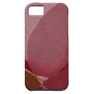 pund-Bougainvillea iPhone 5 Fodral