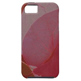 pund-Bougainvillea iPhone 5 Skydd