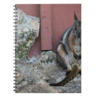 pungdjurs- sitta mot väggen vid sten anteckningsbok