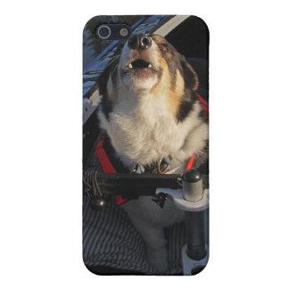 Punkt! iPhone 5 Skydd