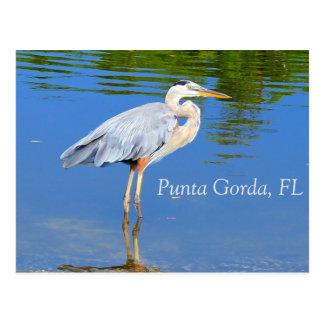 Punta Gorda FL-vykort Vykort