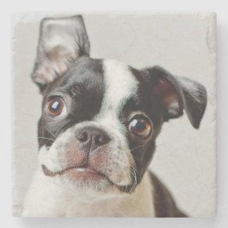 Puppy. för Boston Terrierhund Underlägg Sten