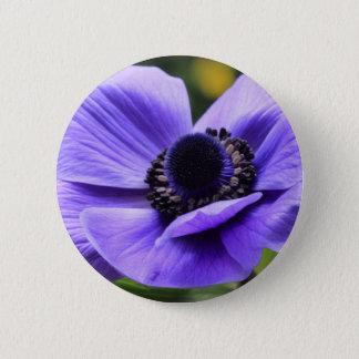 Purpurfärgad anemon standard knapp rund 5.7 cm