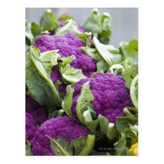 Purpurfärgad blomkål vykort