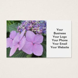 Purpurfärgad blomma blomma för vanlig hortensia visitkort