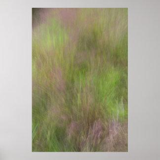 Purpurfärgad blommargräsabstrakt poster