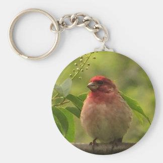 Purpurfärgad Finch Rund Nyckelring