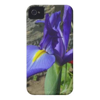 Purpurfärgad Iris iPhone 4 Case-Mate Fodraler