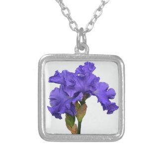 Purpurfärgad Iris Silverpläterat Halsband