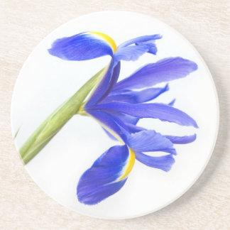 Purpurfärgad Irisblomma Underlägg Sandsten