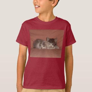 Purpurfärgad kattungeskjorta! tshirts