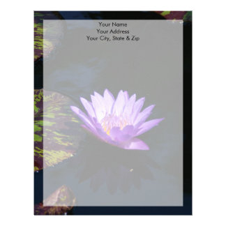 Purpurfärgad lotusblommanäckrosblomma & randig brevhuvud