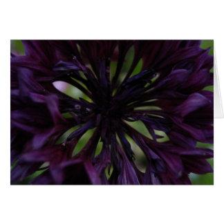 purpurfärgad reflexion hälsningskort