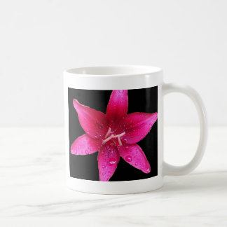 Purpurfärgad starburstlilja kaffemugg