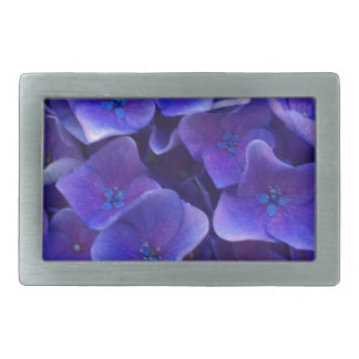 Purpurfärgad vanlig hortensia