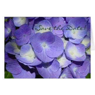 Purpurfärgad vanlig hortensiaspara daterakortet OBS kort