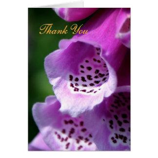 Purpurfärgade Foxglovetrumpeter - tack Hälsningskort
