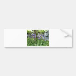 Purpurfärgade Irises Bildekal