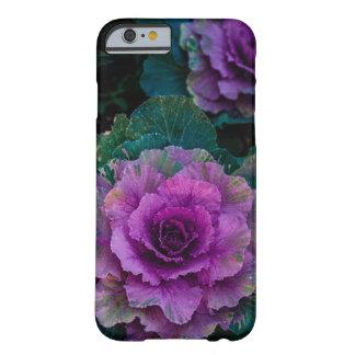 Purpurfärgade kålar, växer lika blommor barely there iPhone 6 fodral