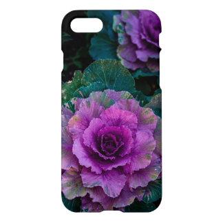 Purpurfärgade kålar, växer lika blommor iPhone 7 skal