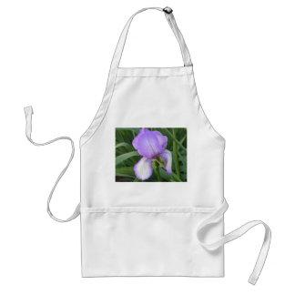 Purpurfärgat Irisförkläde Förkläde