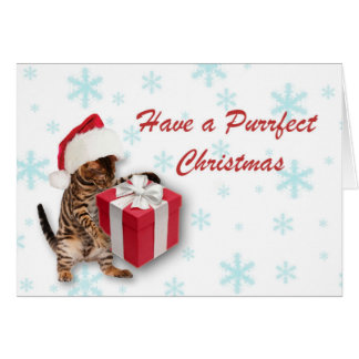 Purrfect jul hälsningskort