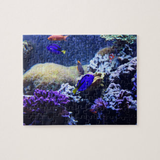 Pussel för målning för blåttTangfisk