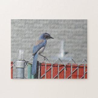 Pussel - westerna Skura-Jay på staket