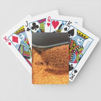 Pygmyigelkott Spelkort