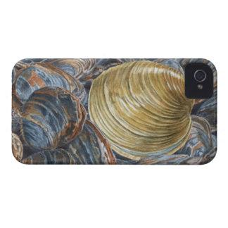Quahog och musslor iPhone 4 fodraler