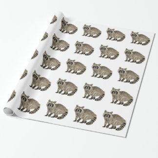 Raccoon på uppmärksamhet presentpapper