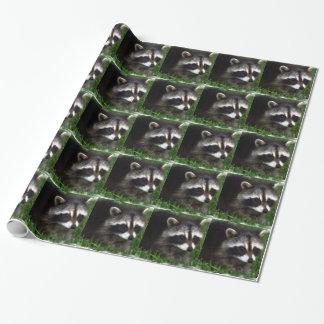 Raccoon Presentpapper