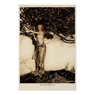 Rackham Freya CC0050 affisch