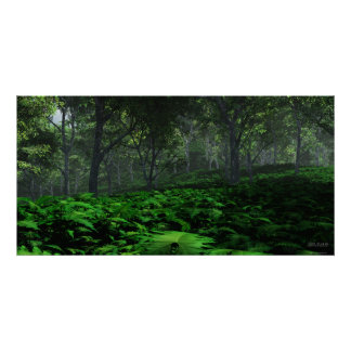 Rådande skog - ytterlighet poster