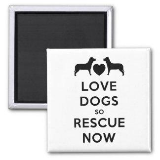 Rädding för kärlekhundar så nu magnet