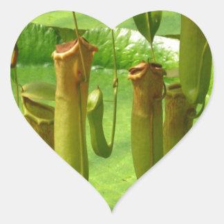 Raffelesia en exotisk tropisk växt hjärtformat klistermärke