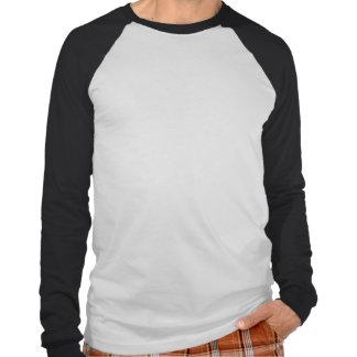 Rak kantlångärmad Reglan T Shirt