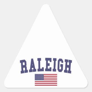Raleigh US flagga Triangelformat Klistermärke
