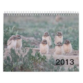 Ranch för 2013 brunnar kalender
