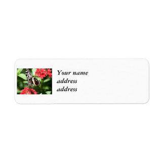 Randig fjäril för sebra returadress etikett
