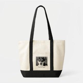 RåttaTerrierhunden som är svartvit, hänger lös Tygkasse