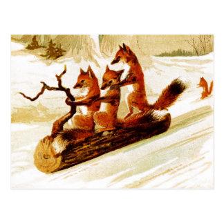 Rävar som Sledding till och med snön på en logga Vykort