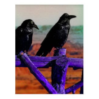 Ravens Vykort