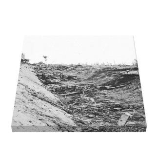 Rebell som är död i dike efter strid av Antietam Canvastryck