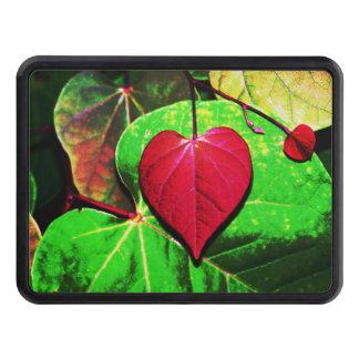 Redbud hjärtalöv dragkroksskydd