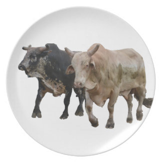 Redeo Dinner Plate