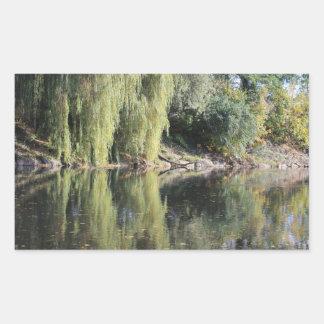Reflekterade pilträd i floden rektangulärt klistermärke